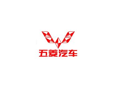 包装机合作伙伴——五菱汽车